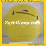 CWB03 Full Colour Water Ball